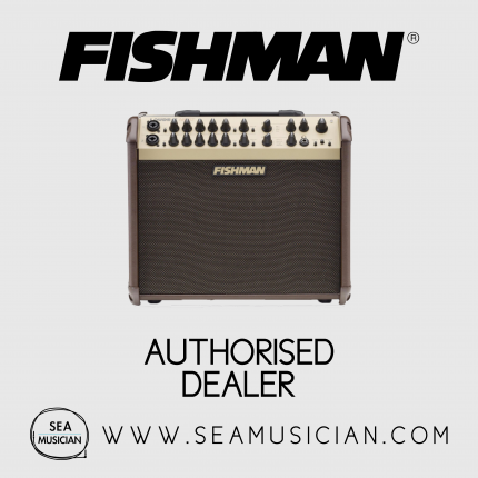 FISHMAN LOUDBOX ARTIST ACOUSTIC INSTRUMENT AMPLIFIER (FISLOUDBOX-ARTIST)