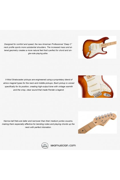FENDER AMERICAN PROFESSIONAL STRATOCASTER ELECTRIC GUITAR, MAPLE FINGERBOARD 0113012747, SIENNA SUNBURST