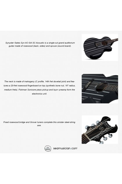 SCHECTER  GLOSS BLACK WITH SILVER PIN STRIPES SYNYSTER GATES SYN AC-GA SC ACOUSTIC GUITAR
