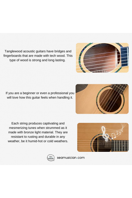 TANGLEWOOD TWR2 D ROASTER II DREADNOUGHT ACOUSTIC GUITAR WITH PACKAGE - NATURAL SATIN COLOR (TWR2-D/ TWR2D)