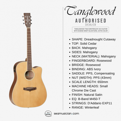 TANGLEWOOD TW10 WINTERLEAF ACO GUITAR WITH B-BAND M450T EQ NATURAL SATIN COLOR (TW 10/ ACOUSTIC/ TUNER)